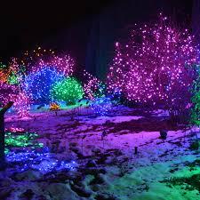 the denver botanic gardens december 2015 christmas lights