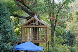 Simple Backyard Tree Houses by Pictures Of Tree Houses And Play Houses From Around The World