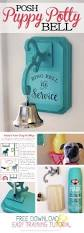 Dog Themed Home Decor Best 25 Puppy Room Ideas On Pinterest Pet Rooms Dog Rooms And