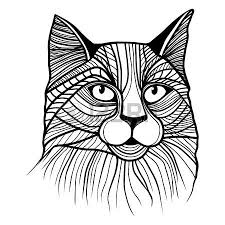 animal sketch images u0026 stock pictures royalty free animal sketch