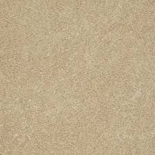 Shaw Area Rugs Shop Shaw Supreme Delight 3 Twinkle Rectangular Indoor Tufted Area