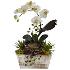 faux orchids artificial orchids you ll wayfair