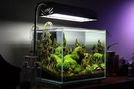 Aquascape Lighting 1ft Cube Ohko Rock Tank Aquatic Mag