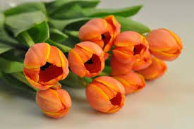 wholesale flowers online wholesale flowers business personal sales genuine wholesale prices