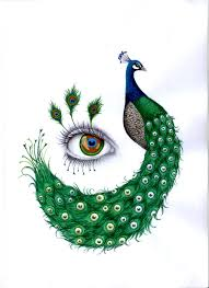 drawn peacock easy draw pencil and in color drawn peacock easy draw