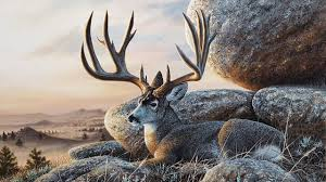 acrylic landscape speed painting mule deer at sunset youtube
