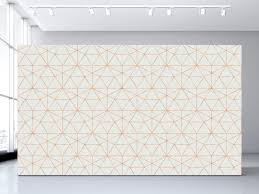 Ceiling Wallpaper by Graphic Quartz Wallpaper Olivia Poppy