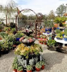 flowers store near me gardening stores near me 4 nursery garden plants near me garden