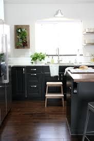 Ikea Black Kitchen Cabinets Black Brown Ramsjo Cabinets Adorable Ikea Black Kitchen Cabinets