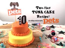 diy feedmypaws recipe tuna birthday cake u2013 feed paws