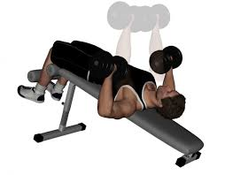 Bench Exercises With Dumbbells Decline Dumbbell Bench Press Pictures Guide And Tips