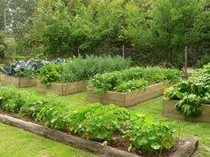 raised vegetable beds are simple to make and easy to maintain use