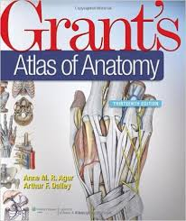 Human Anatomy Images Free Download Grant U0027s Anatomy Pdf Free Download File Size 054 00 Mb File Type