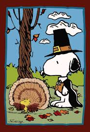 peanuts thanksgiving flag pinned with pinvolve pinvolve co