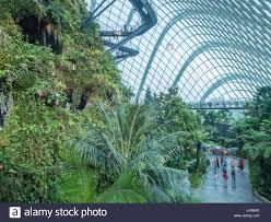 indoor gardens stock photos u0026 indoor gardens stock images alamy