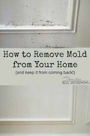 Best  Remove Mold Ideas On Pinterest Grout And Mould Removers - Removing mildew from bathroom walls 2