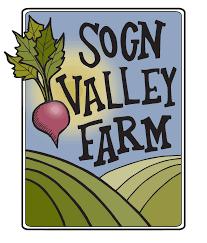 native plants wisconsin native plants and pollinator friendly habitat sogn valley farm
