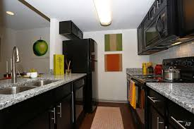 1 Bedroom Apartments Near Usf by University Of South Florida At Tampa Apartments University Of