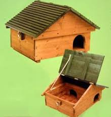 How To Find My House Plans How To Build A Wood Hedgehog House Hedgehog House Hedgehogs And