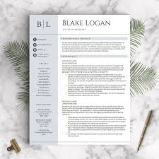 Resume Templates For Professionals Best 25 Professional Resume Template Ideas On Pinterest