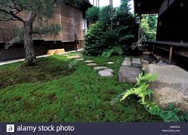 rock gravel and moss are the main components of the zen garden of