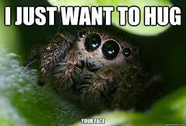 Spider Meme Misunderstood Spider Meme - misunderstood spider hug