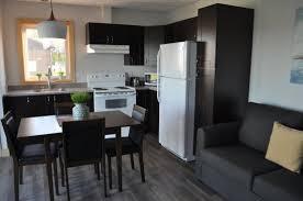 marchand de cuisine equipee appartement deux chambres cuisine équipée two bedrooms appartment