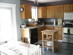 Kitchen Televisions Under Cabinet Concrete Countertops Kitchen Paint Colors With Light Oak Cabinets