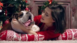 Dogs Decorating Christmas Tree Video by Happy Girls Mother And Daughter Decorating A Christmas Tree At