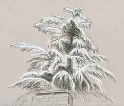 a rare white christmas in seattle urban sketchers