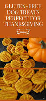 thanksgiving cookies recipes 88 best images about dog treat recipes on pinterest dog biscuits