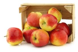 monthly fruit club organic apple of the month club gourmet apple of the month club