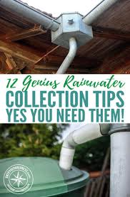 best 25 water collection system ideas on pinterest water