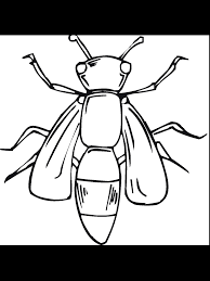 tiny creature bug 20 bug coloring pages free printables