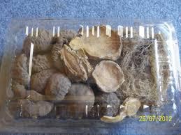 obat kuat di tukang jamu www klinikobatindonesia com agen resmi