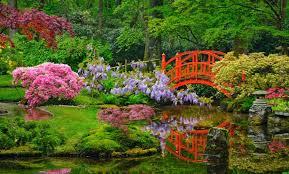 japanese garden japanese garden in the hague opens for spring
