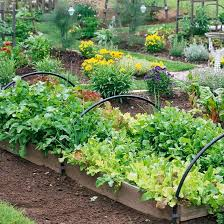 of beautiful yet practical vegetable garden designs 24