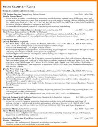 Federal Job Resume Template Resume Examples Free Resume Examples It Professional Sample