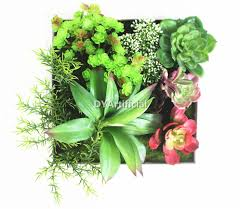 Decorative Plants For Home Indoor Decorative Fake Platsic Succulent Plants Wall Hanging