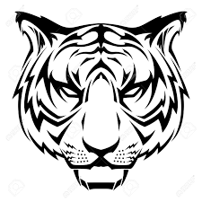 tiger design royalty free cliparts vectors and stock
