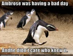 Having A Bad Day Meme - ambrose was having a bad day andhe didn t care who knew it