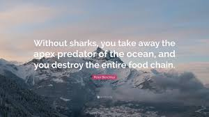 Peter Benchely - peter benchley quote u201cwithout sharks you take away the apex