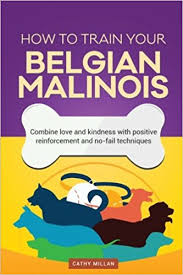 belgian shepherd easy to train how to train your belgian malinois dog training collection