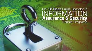 the 12 best online bachelor in information assurance u0026 security