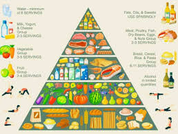 tell us about your food pyramid