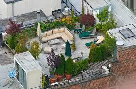 roof garden plants garden design plants rooftop gardens top nyc hanging gardens