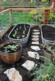 raised bed gardening guide raised bed raising and veggies