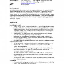 Resume Examples Skills by Professional Profile Resume Example Profile For A Resume Examples