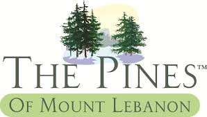 Mt Lebanon Office Furniture by The Pines Of Mt Lebanon Pittsburgh Pa With 19 Reviews