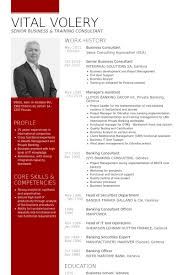 Technical Consultant Resume Sample by Business Consultant Resume Samples Visualcv Resume Samples Database